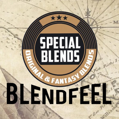 Blendfeel SPECIAL BLENDS 10ml - Aroma concentrato